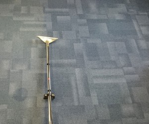 Image 1 of Carpet Cleaning in Cambridge