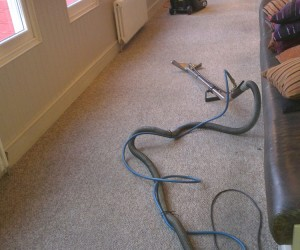 Image 4 of Carpet Cleaning in Cambridge