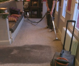 Image 3 of Carpet Cleaning in Cambridge