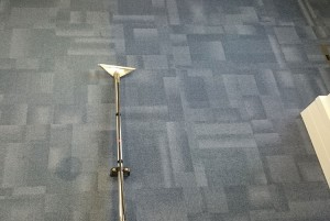 Light Office Carpet Cleaning