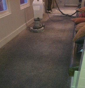 Heavily Soiled Carpet Cleaning