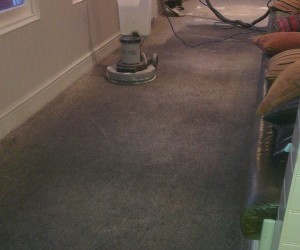 Image 2 of Carpet Cleaning in Cambridge